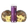 Crystal & Fossil Bookends